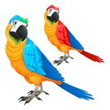 Funny parrots in two different colors Stock Photo