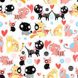 Funny pattern lovers cats Royalty Free Stock Photos