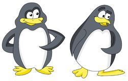 Funny Penguin Royalty Free Stock Photography