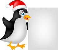 Funny penguin cartoon xmas with blank sign Royalty Free Stock Photos