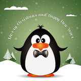 Funny penguin at Christmas Stock Photo