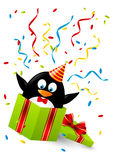Funny penguin. In gift box Royalty Free Stock Photography