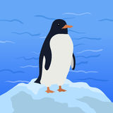 Funny Penguin Illustration Stock Photography