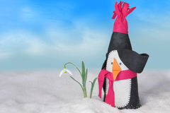 Funny penguin and a snowdrop. Funny and surprised penguin in winter landscape discovered first snowdrop Stock Photos