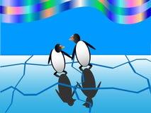Funny penguins Stock Photos