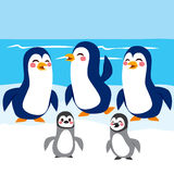 Funny Penguins Antarctica Stock Images