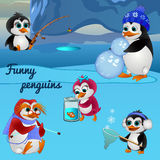 Funny penguins, busy with different things Stock Photography