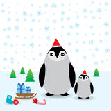 Funny penguins in the red hat, christmas winter Royalty Free Stock Image