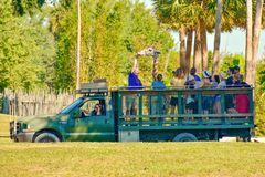 Funny person giving food to a giraffe, during safari tour at Bush Gardens Tampa Bay Theme Park. Tampa, Florida. December 26, 2018 Funny person giving food to a royalty free stock photography