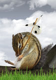 Funny pet chipmunk with luggage, emigration concept. Funny pet chipmunk with luggage stock photos