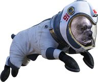 Funny Astronaut Dog, Space, Isolated, Spacesuit stock illustration