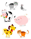Funny pets Stock Image