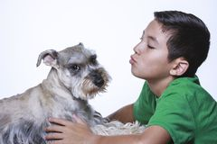 Funny photo of dog not wanting to be kissed. royalty free stock photos
