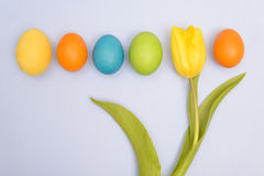 Funny photo of  multicoloured Easter eggs against uniform backgr Royalty Free Stock Image