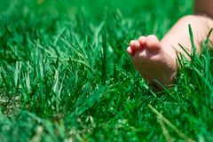 Funny picture of baby feet. Royalty Free Stock Photo