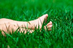 Funny picture of baby feet in grass. Stock Images