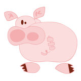 Funny pig. Stock Photography