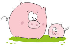 Funny pig Stock Photography