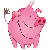 Funny pig. Funny pink farm little pig Stock Photography