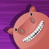 Funny pig avatar icon Royalty Free Stock Photos