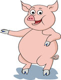 Funny pig cartoon Stock Photography