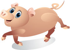 Funny pig cartoon Stock Image