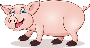 Funny pig cartoon Stock Images