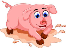 Funny pig cartoon with mud puddle Royalty Free Stock Photography