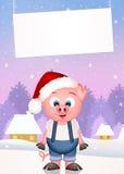 Funny pig at Christmas Royalty Free Stock Photos