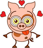 Funny pig feeling madly in love royalty free illustration