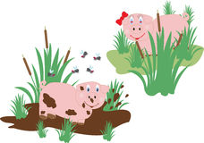Funny pig lovers Stock Images