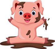Funny pig playing in the mud Stock Image