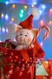 Funny pig in a red bag with candy cane on background with illumination. Funny greeting card with new year 2019 stock photography