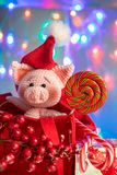 Funny pig in a red bag with lollipop on background with illumination. Funny greeting card with new year 2019 royalty free stock photos