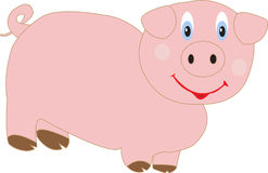 Funny pig Royalty Free Stock Photo