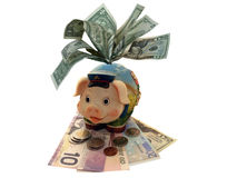 Funny piggy bank Stock Images