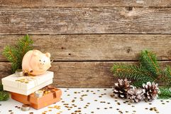 Funny piggy Bank with money symbol of new year 2019 next to the pine cones on rustic wooden background. Chinese new year. copy