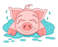 Funny piggy lies and smiling on water puddle Royalty Free Stock Images