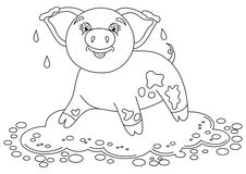 Funny piggy standing on dirt puddle, coloring book page Royalty Free Stock Photo