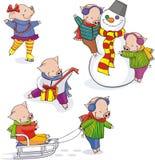 Funny piglets (2) Royalty Free Stock Photo