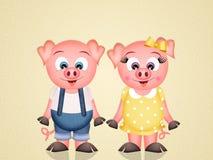 Funny pigs Stock Photo