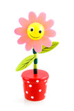 Funny pink flower. Funny flower on white background Stock Photos