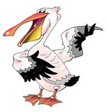 Funny pink Pelican beak singing actor paws Stock Photography