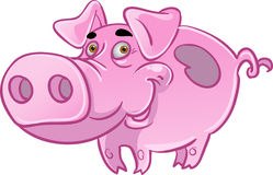 Funny pink pig. On white background Royalty Free Stock Photography