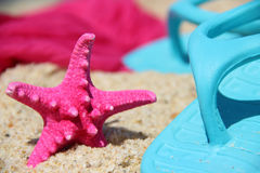 Funny pink starfish on the seacost Royalty Free Stock Photos