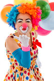 Funny playful clown. Portrait of a funny playful female clown in colorful wig air kissing and looking at camera, in the background balloons, isolated on a white Stock Image