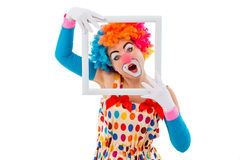 Funny playful clown. Portrait of a funny playful female clown in colorful wig holding a white frame, looking at camera and showing emotions, isolated on a white Royalty Free Stock Photography