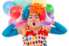 Funny playful clown. Portrait of a funny playful female clown in colorful wig keeping hands on head and showing emotions, in the background balloons, isolated on Royalty Free Stock Photos