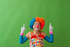 Funny playful clown. Portrait of a funny playful female clown in colorful wig pointing and looking upward and smiling, standing on a green background Royalty Free Stock Image