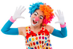 Funny playful clown. Portrait of a funny playful female clown in colorful wig teasing, looking at camera and showing palms, isolated on a white background Stock Photo